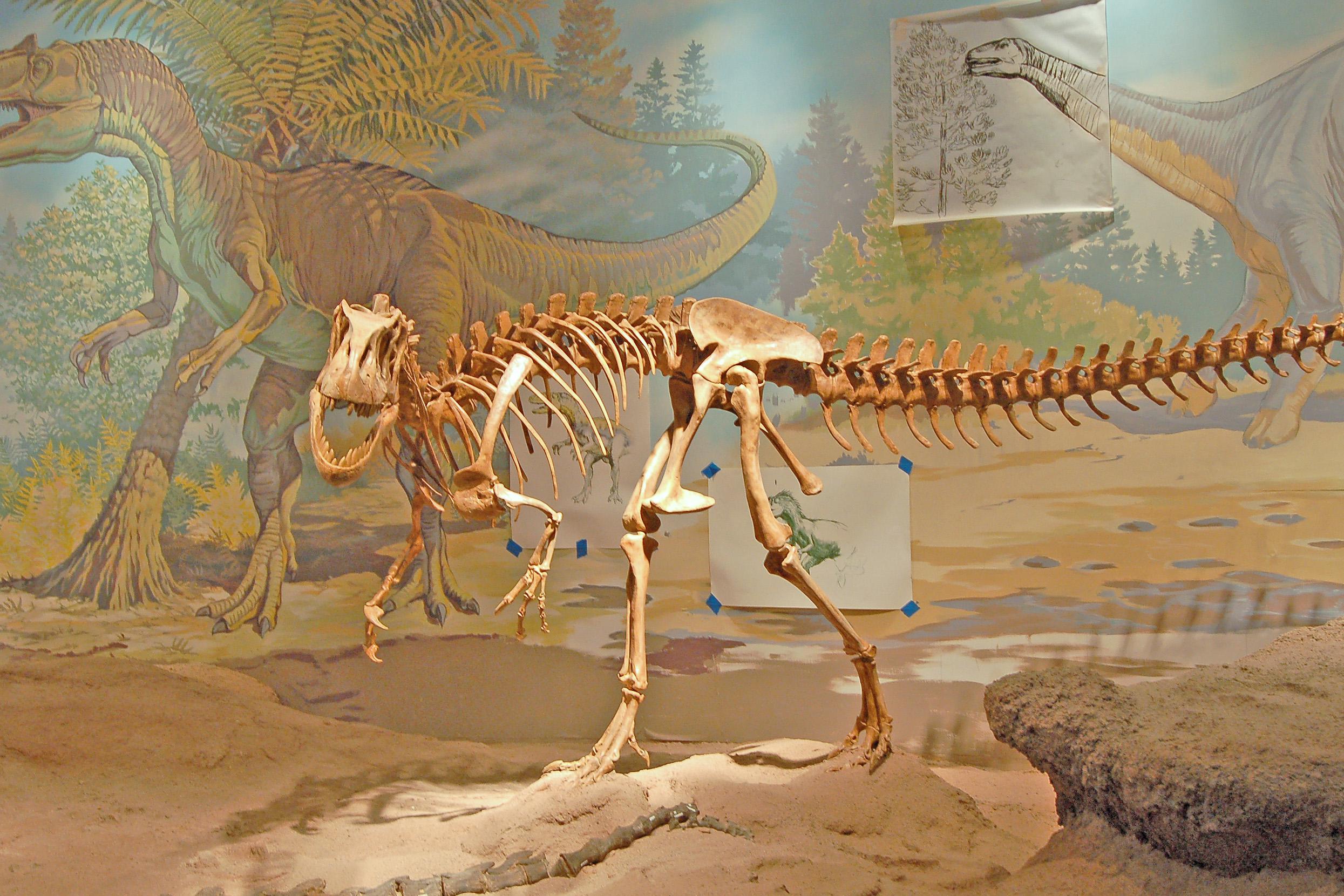 Natural History Museum Of Utah Dinosaurs